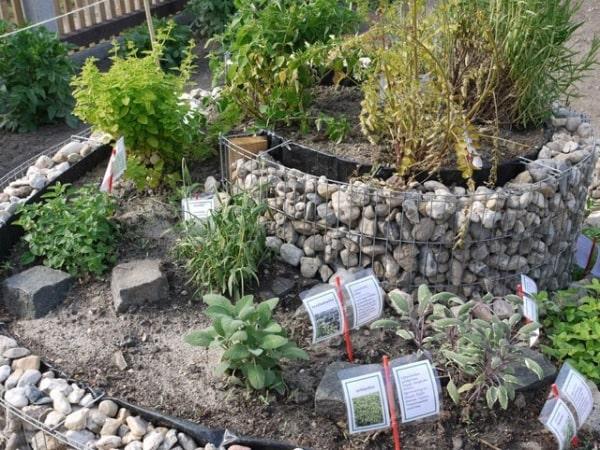 Ideen-Garten (13)