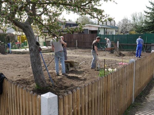 Ideen-Garten (2)