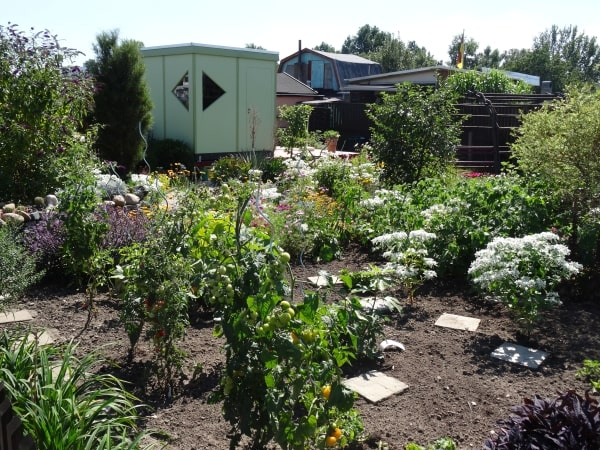 Ideen-Garten (26)