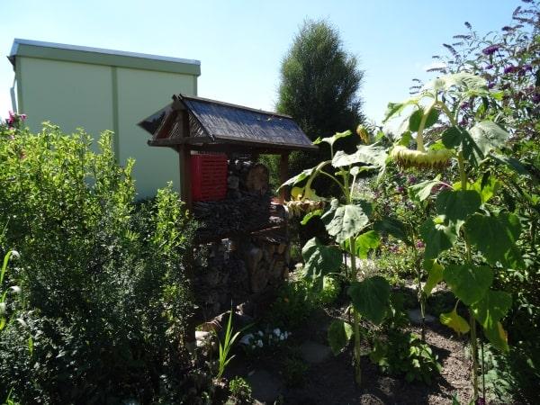 Ideen-Garten (29)