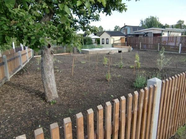 Ideen-Garten (5)
